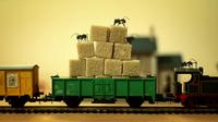 myrer-pa-toget.png